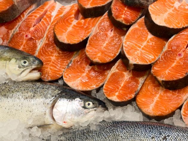 20130226181211_salmon
